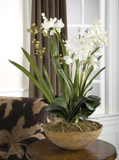 Uttermost MOTH ORCHID PLANTER #60039