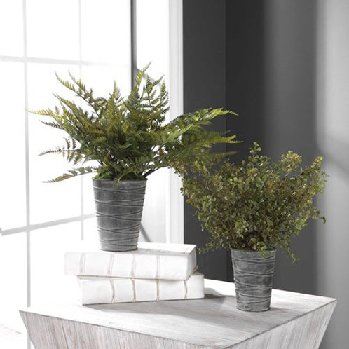 Uttermost QUIMBY POTTED FERNS S/2 #60147