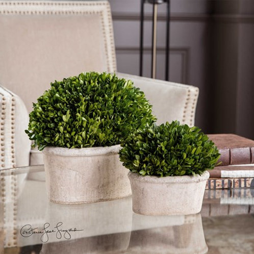 Uttermost PRESERVED BOXWOOD OVAL DOMES, S/2 #60107