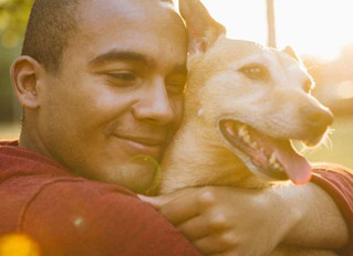 The Benefits of Service Dogs in Cancer