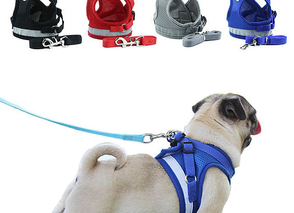 Pet Safety Vest & Harness
