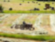 COriver-atd-091818-2.jpg