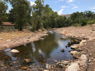 Rancher, Ditch Company and Environmental Group Work Together to Restore and Improve Left Hand Creek