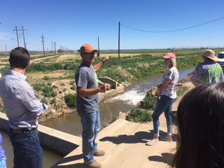 Lessons in Ag Water