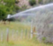 Rustic-irrigation-scene-771x578.jpg