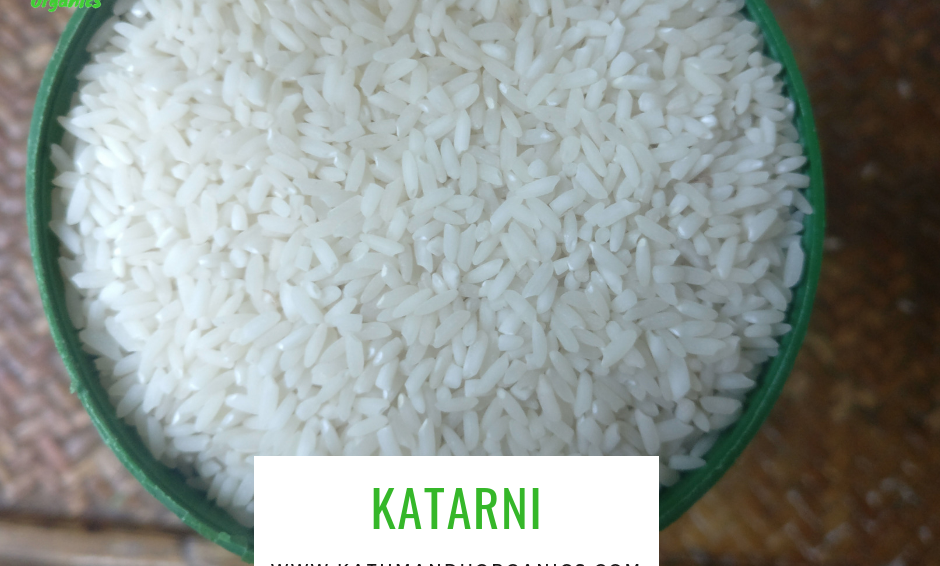 Katarni from Bara