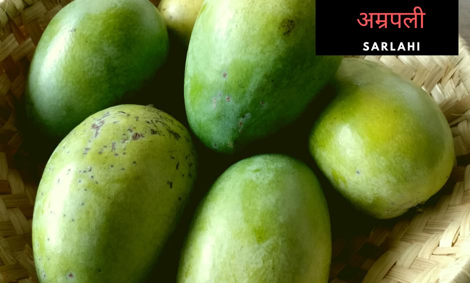 Amrapali Mango - 5kgs