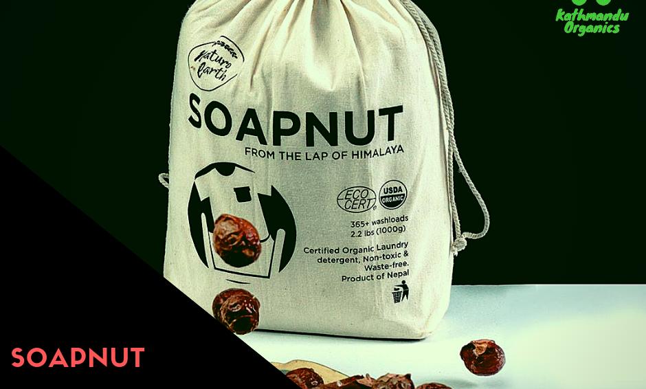 Soapnut - 1kg