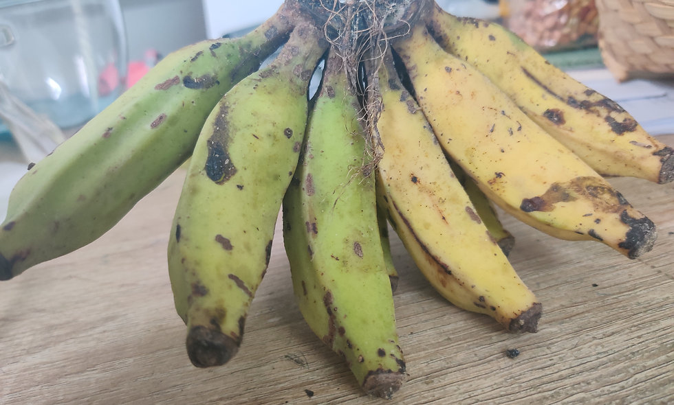 Local Banana- 12pcs
