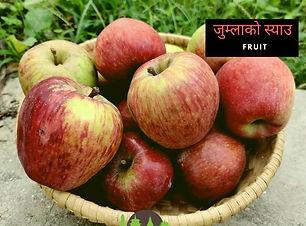 Jumla apple.jpeg