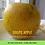 Thumbnail: Golden Dolpo Apple - 5 kgs