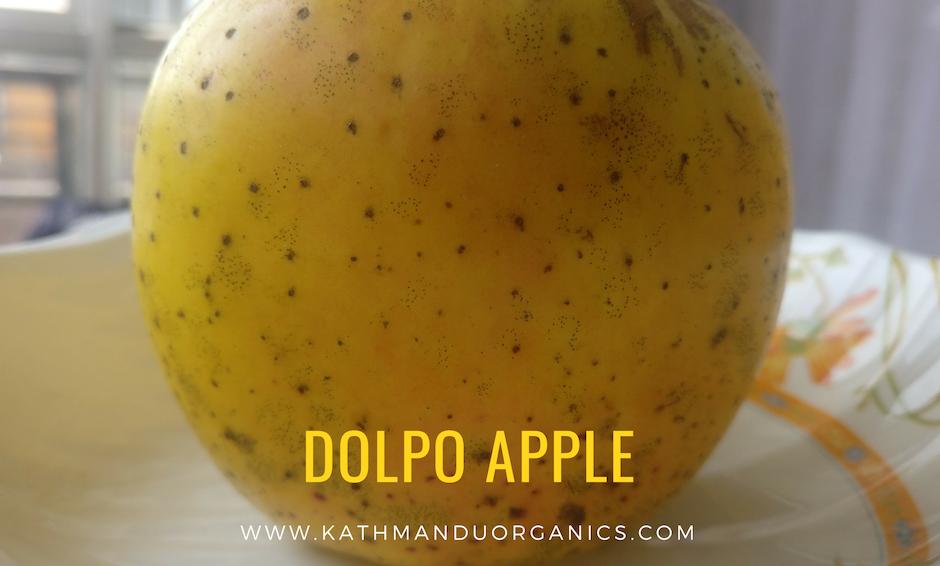 Golden Dolpo Apple - 5 kgs