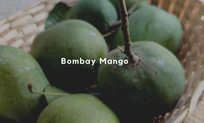 Bombay Mango - 5kgs
