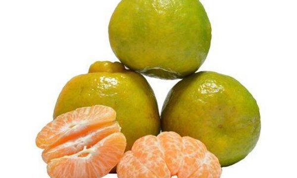 Nagpur Orange - 1kg