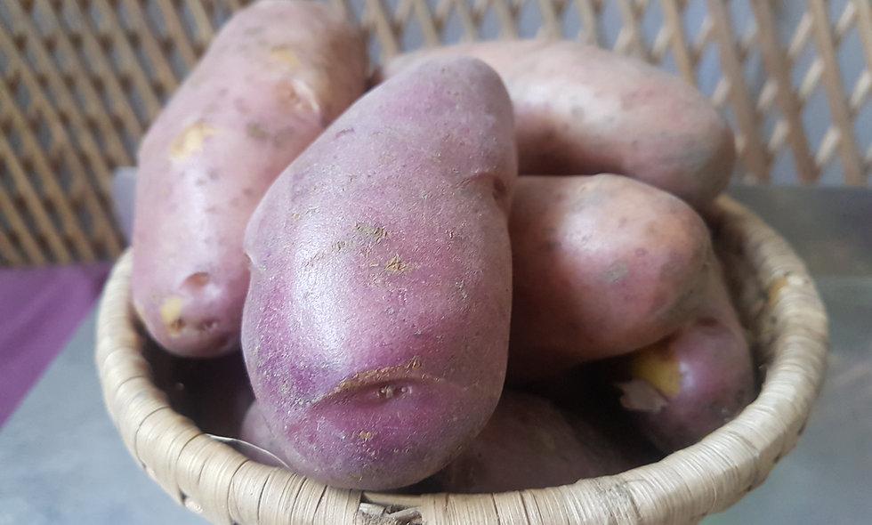 Hemja Potato - 4kgs