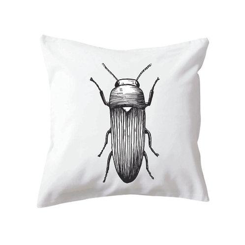 Cushion Beetle Two