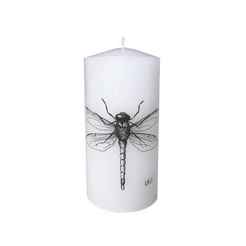 Dragonfly candle