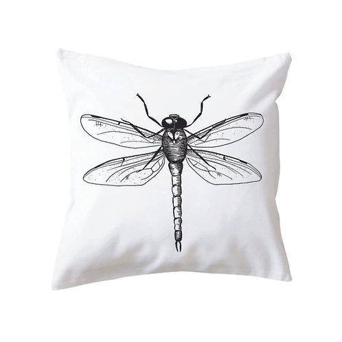 Cushion Dragonfly