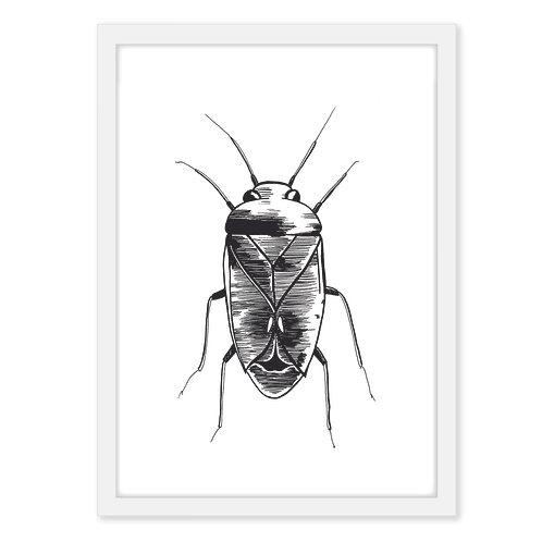 Beetle one