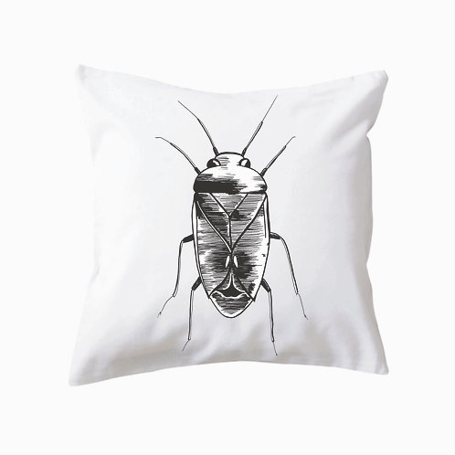 Cushion Beetle One