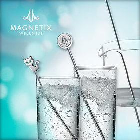 Magnetic Water Stick in Australia, Magnetic Therapy for Arthritis, Magnetix Wellness