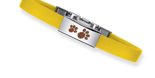 Magnetic Bracelet Set for Kids Paw
