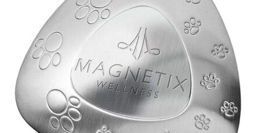 Pet Water Bowl Magnet, large