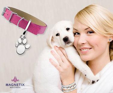 magnetic-jewellery-pets-motives.jpg