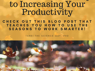 Why Seasonal Awareness is the Key to Increasing Your Productivity