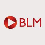 BLM Law_grey.png