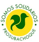 PROSUBACHOQUE-CABECERA_edited.png