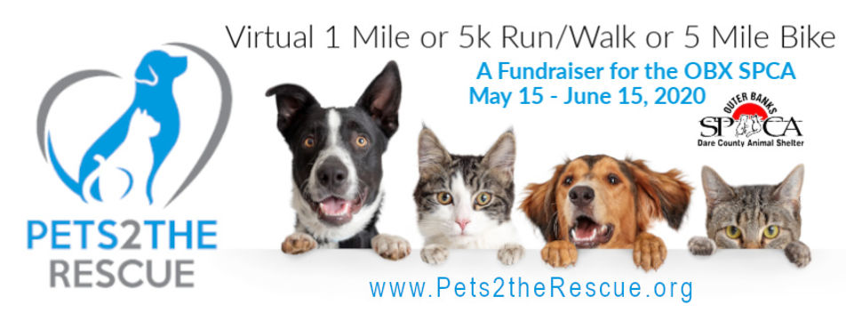 pets2therescue banner.jpg