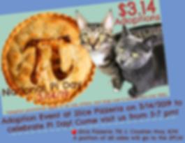 Pi Day _ Slice 3.14.19.png