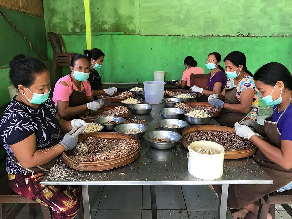 Les noix de cajou sont récoltées et transformées à Montigunung. Crédit : Future for children
