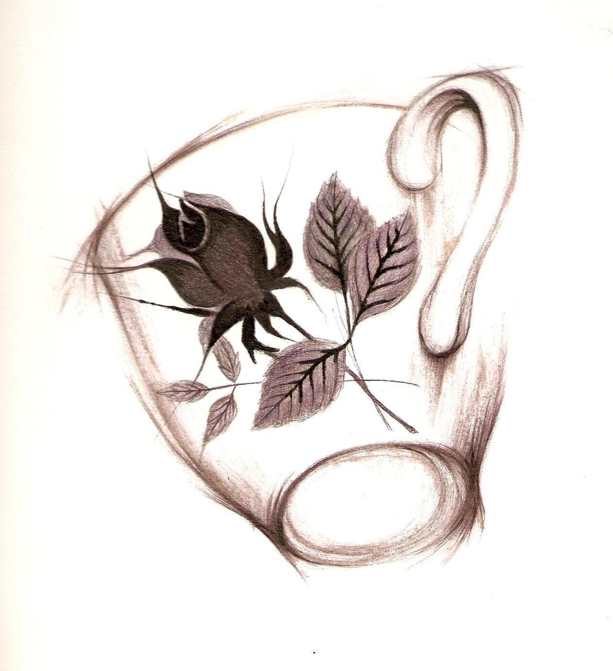 vintage rose cup