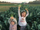 Broccoli Girls.JPG