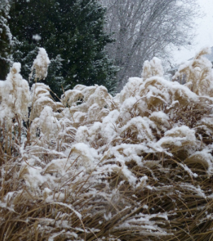 10 Things To Do on a Snow Day