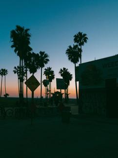 Venice weed.jpg
