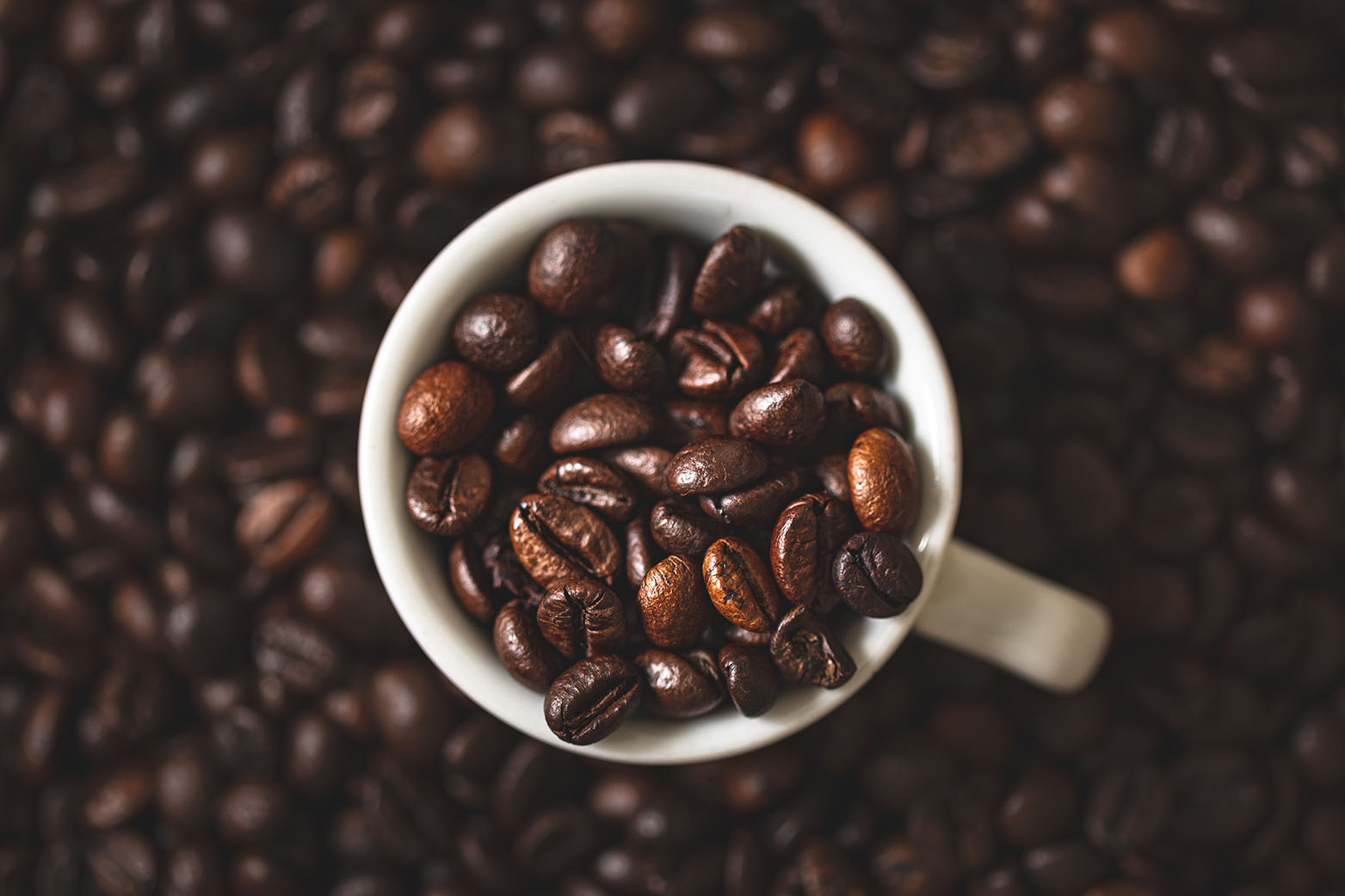 Cafe Noir giorno 1-9007.jpg
