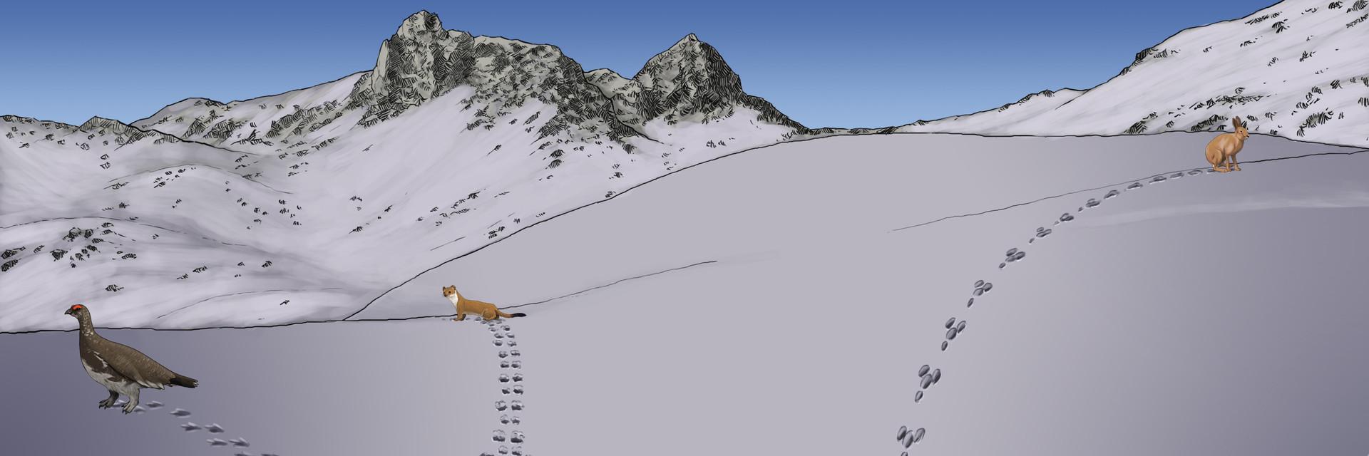 Paysage - Alpage Hiver