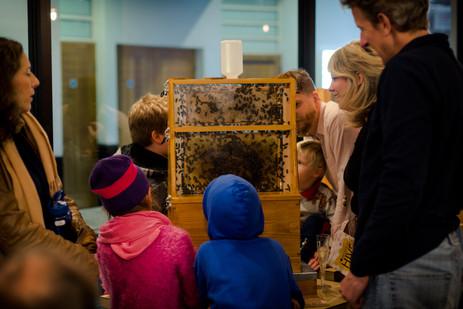 Honeyscribe Hive events in Princesshay celebrating the Princesshay City Bee Project