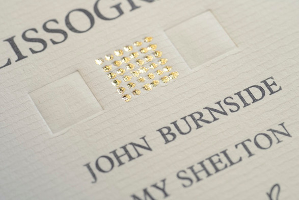 Detail from Melissographia (2009) by Amy Shelton and John Burnside