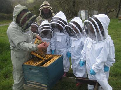 Honeyscribe beekeeping workshop at Buckfast Abbey