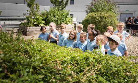 Children on a Honeyscribe Hive workshop, visiting the Princesshay rooftop bee garden