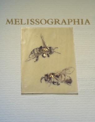 Detail from Melissographia by Amy Shelton & John Burnside