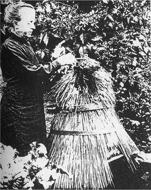 Photograph depicting the practice of telling the bees
