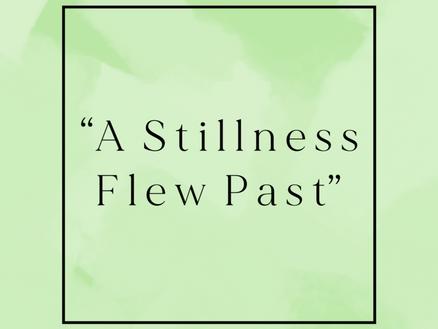 """A Stillness Flew Past"""
