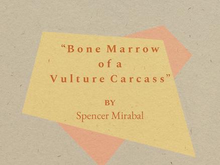 """Bone Marrow of a Vulture Carcass"""