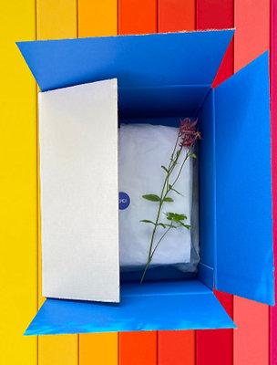 ClimaxBox