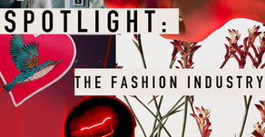 Spotlight on the Fashion Industry